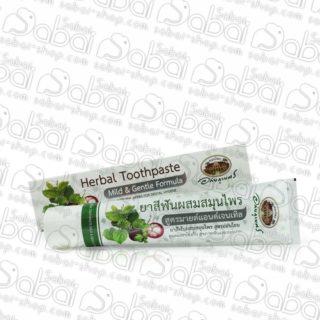 Купить Коричневая травяная зубная паста с мангостином Абхай в Красноярске 8855539004003